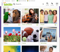 dog and bird, girl playing guitar, group of people, plants. sports balls, technology